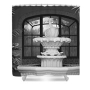 Fountian And Window Shower Curtain