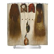 Four Birds Of Paradise And Two Kingfishers Shower Curtain