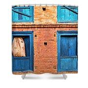 Four Blue Windows Shower Curtain