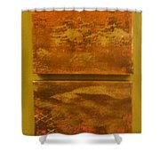 Four Brown Panels Shower Curtain