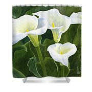 Four Calla Lily Blossoms With Leaves Shower Curtain