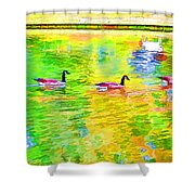 Four Canadian Geese In The Water 1 Shower Curtain