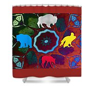 Four Directions   -009 Shower Curtain