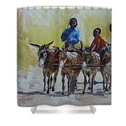 Four Donkey Drawn Cart Shower Curtain