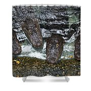 Four For Lunch Shower Curtain