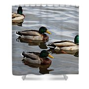 Four Green Heads Shower Curtain