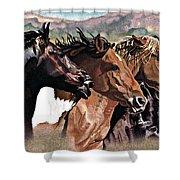 Four Horses Shower Curtain