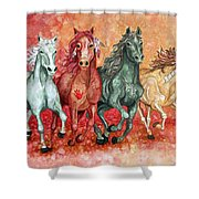 Four Horses Of The Apocalypse Shower Curtain