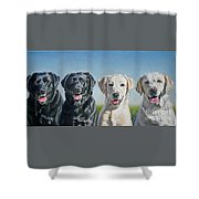 Four Labs Shower Curtain