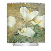Four Lilies Shower Curtain