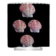 Four Of A Kind Shower Curtain