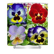 Four Pansies Shower Curtain