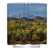 Four Peaks On The Horizon  Shower Curtain