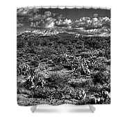 Four Peaks  Shower Curtain
