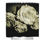 Four Roses Shower Curtain