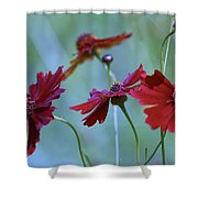 Four Singers And Three Microphones Shower Curtain