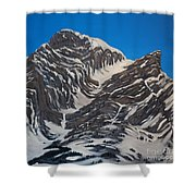 Four Sisters 2 Shower Curtain