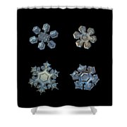Four Snowflakes On Black 2 Shower Curtain