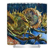 Four Sunflowers Gone To Seed, By Vincent Van Gogh, 1887, Kroller Shower Curtain