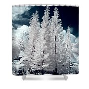 Four Tropical Pines Infrared Shower Curtain