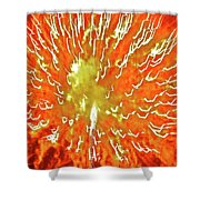 Fourth Of July  2 Shower Curtain