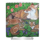 Fox And Kits Shower Curtain