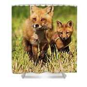 Fox Family Shower Curtain