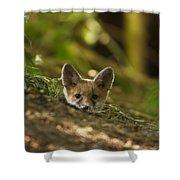 Fox Hole Shower Curtain