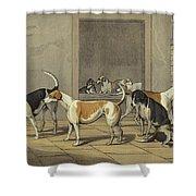 Fox Hounds Shower Curtain