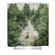 Fox In The Flurries Shower Curtain