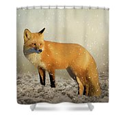 Fox In The Snowstorm - Painting Shower Curtain