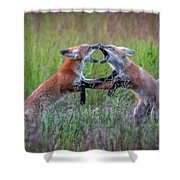 Fox Kitts Playing Shower Curtain