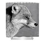 Fox - Mono Shower Curtain