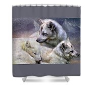 Fox Moods Shower Curtain