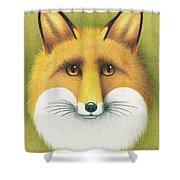 Fox Portrait Shower Curtain