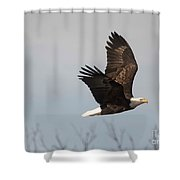 Fox River Eagles - 24 Shower Curtain