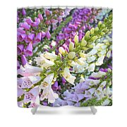 Foxglove Card Shower Curtain