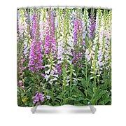 Foxglove Garden - Vertical Shower Curtain