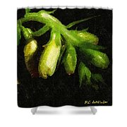 Foxglove On Wood Panel Shower Curtain