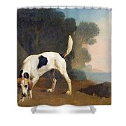 Foxhound On The Scent Shower Curtain