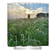 Foxtail Grasses In Glacial Park Shower Curtain