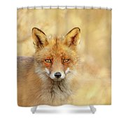 Foxy Faces Series- That Look Shower Curtain