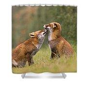 Foxy Love- Kiss Shower Curtain