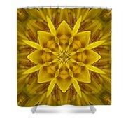 Fractal 10 Shower Curtain