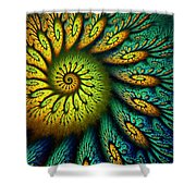 Fractal Abstract 061710 Shower Curtain