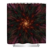 Fractal Floral Fantasy 02-13-10-b Shower Curtain