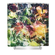 Fractal Flowers Shower Curtain