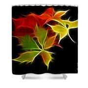 Fractal Leaves Shower Curtain