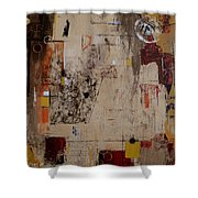 Fractions Shower Curtain