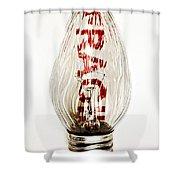 Fragile Light Bulb Shower Curtain